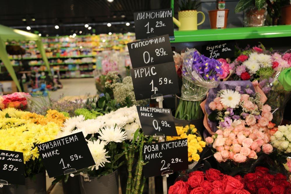 Цветы опт гомель адрес, георгины